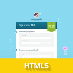 html5_forms